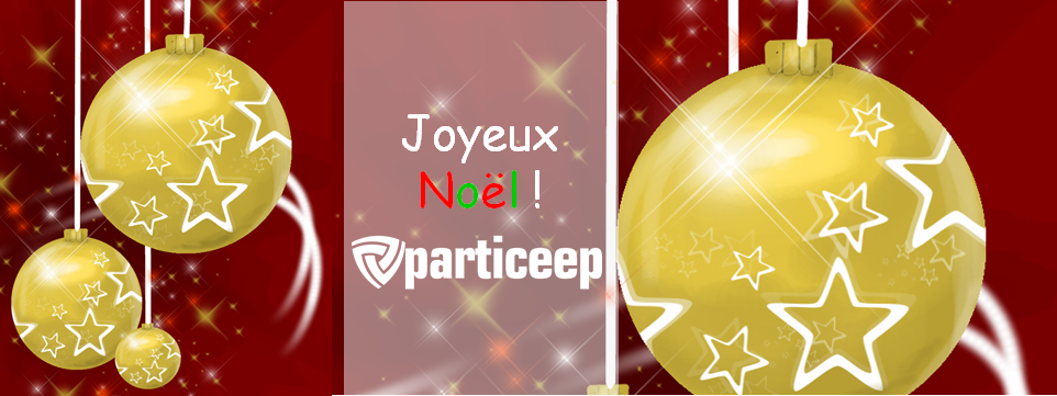 noel-particeep2013